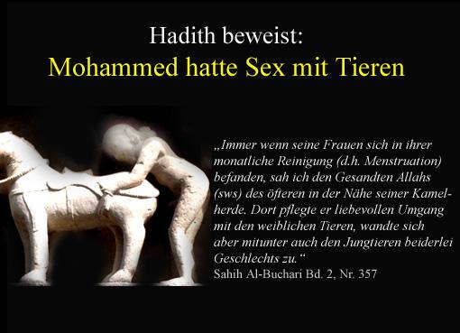 sex-mit-tieren-mohammed