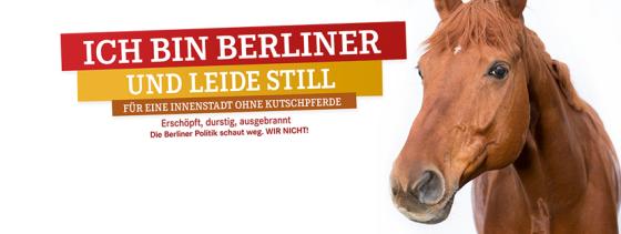 Berliner Kutschpferd