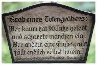 Die Totengräber derDemokratie